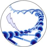 logo_lof72