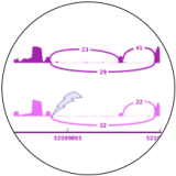 logo_rnaseq72