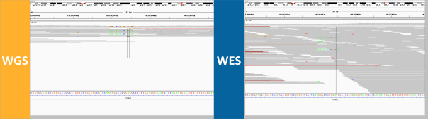 discordant-genotype-5-dense-mnp